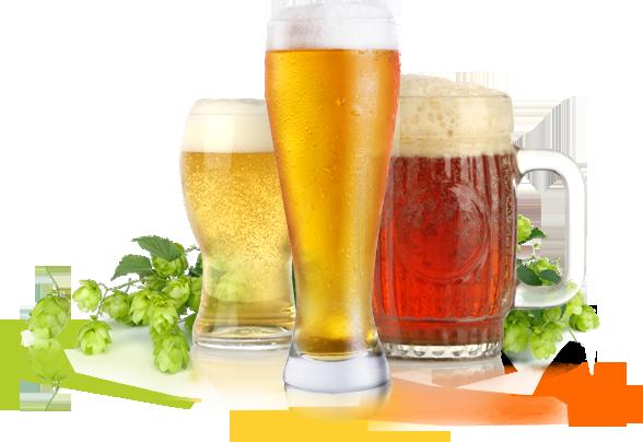 Пиво укрепляет зубы и суставы