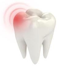 Какие части зубы и что мы про них знаем?