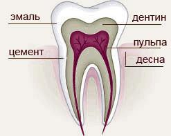 Эмаль зуба и трещины