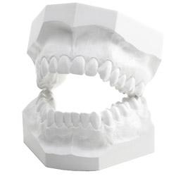 Гипс в стоматологии